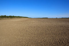 Cultivated arable field Stock Photography
