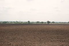 Cultivated area Royalty Free Stock Photography