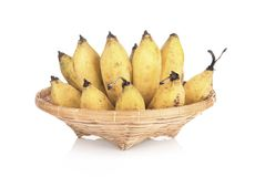 Cultivated Banana in bamboo plate on a white background. Cultivated Banana in bamboo plate on white background royalty free stock images