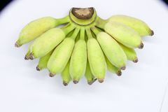 Cultivated banana. Cultivated banana - Bananas are highly nutritious and can be cooked in many ways royalty free stock photography