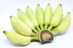 Cultivated banana. Cultivated banana - Bananas are highly nutritious and can be cooked in many ways stock images