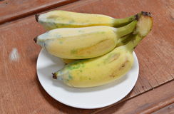 Cultivated banana on dish Royalty Free Stock Images
