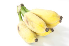 Cultivated banana. Isolated on white royalty free stock images