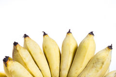 Cultivated banana isolated Stock Images