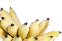 Cultivated banana isolated Stock Photography