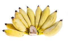 Cultivated banana isolated Royalty Free Stock Photography