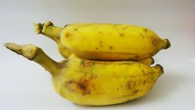 Cultivated banana Stock Photography