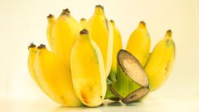 A Cultivated Banana. Cultivated banana, one of the fruits in Thailand. Can be processed in many ways stock image
