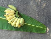 Cultivated Banana, Thai Banana and green banana leaf Royalty Free Stock Image