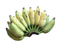 Cultivated Banana, Thai Banana and green banana leaf isolated on Stock Images