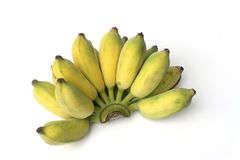 Cultivated banana. Or thai banana on white background royalty free stock image
