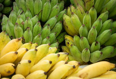 Cultivated banana. In Thailand country royalty free stock photo