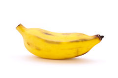 Cultivated banana Stock Images