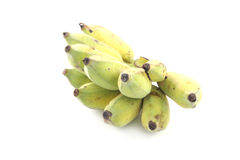 Cultivated Banana on white background Stock Images