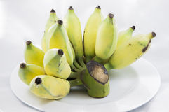 of Cultivated Banana on White Plate Royalty Free Stock Images