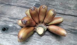 Cultivated banana on wooden floor Stock Photography
