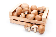Cultivated brown mushrooms in wooden crate Royalty Free Stock Images