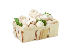 Cultivated button mushrooms in the wooden basket. Fresh cultivated button mushrooms with twigs of parsley in the wooden basket on a white background Royalty Free Stock Photos