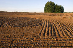 Cultivated farm field agriculture landscape Stock Photo
