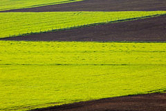 Cultivated Farm Field Patterns Royalty Free Stock Photography