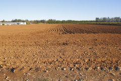 Cultivated Farm Land Royalty Free Stock Photo