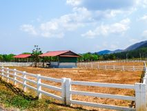 Cultivated Farm in Sunny Day Royalty Free Stock Photography