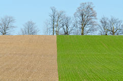 Cultivated farmers field Royalty Free Stock Photography