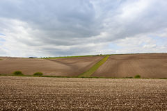 Cultivated farmland Royalty Free Stock Image