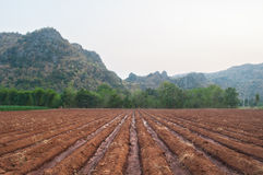 Cultivated farmland field soil - agriculture landscape Stock Images
