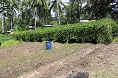 Cultivated and fertiled soil in the sloping areas. Royalty Free Stock Photography