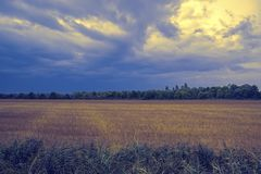 Cultivated field in autumn. Cultivated field and cloudy sky in autumn stock photo