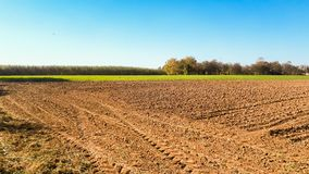 Cultivated field background. Cultivated field prepared for sowing stock photos