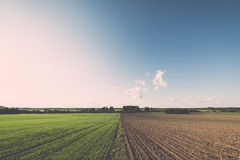 Cultivated field and blue sky with sun - vintage effect Stock Photography