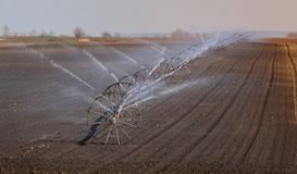 Cultivated field watering in early spring. Watering of cultivated field in early spring, irrigation equipment spraying water to land stock photos