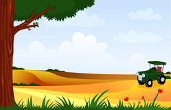 Cultivated fields Royalty Free Stock Photo