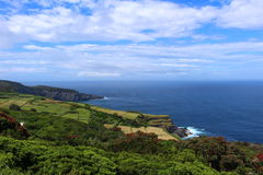 Cultivated fields on alongside ocean cliffs on Terceira. A vibrant landscape of cultivated fields alongside dramatic cliffs on the Portuguese island of Terceira Stock Images