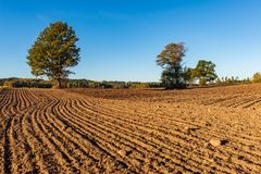 Cultivated fields in countryside with dark and wet soil for agriculture. Tractor made plotting furrows on the ground stock image