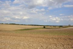 Cultivated fields Stock Image