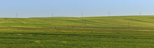Cultivated fields in the mountains of Gobustan (Azerbaijan) Royalty Free Stock Photos