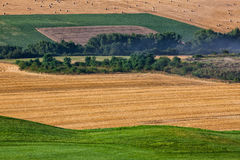 Cultivated fields next to a golf course Stock Photos