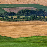 Cultivated fields next to a golf course Royalty Free Stock Image