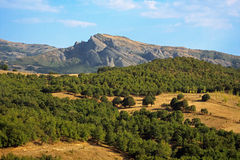 Cultivated fields and orchards, Greece stock images