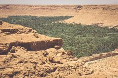 Cultivated fields and palms in Errachidia Morocco North Africa A. Frica Royalty Free Stock Images