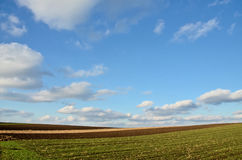Cultivated fields. Plowed fields in northern Serbia (cultivated land stock photos