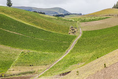 Cultivated fields on slopes Stock Photo
