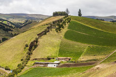 Cultivated fields on slopes Royalty Free Stock Images