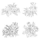 Cultivated flowers, outline, set Stock Images
