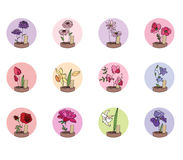 Cultivated flowers in pots.  Set of round icons Stock Images