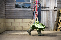 Cultivated Gardener Harvest Plant Concept Royalty Free Stock Images