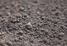 Cultivated gray dried soil Royalty Free Stock Images
